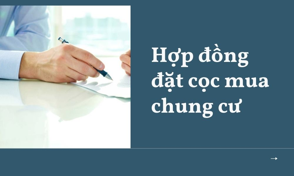 hop-dong-dat-coc-mua-chung-cu