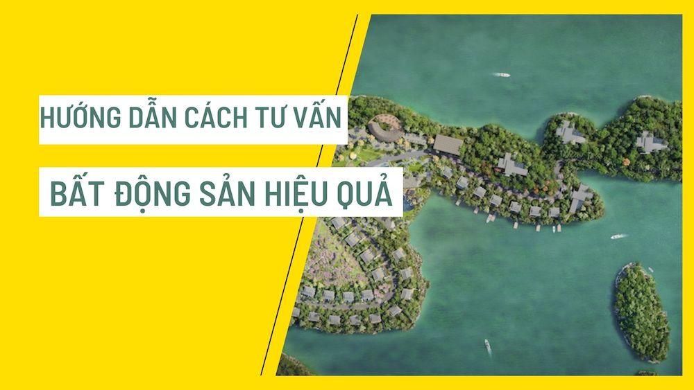 huong-dan-cach-tu-van-bat-dong-san-hieu-qua-tu-hlv-chuyen-nghiep